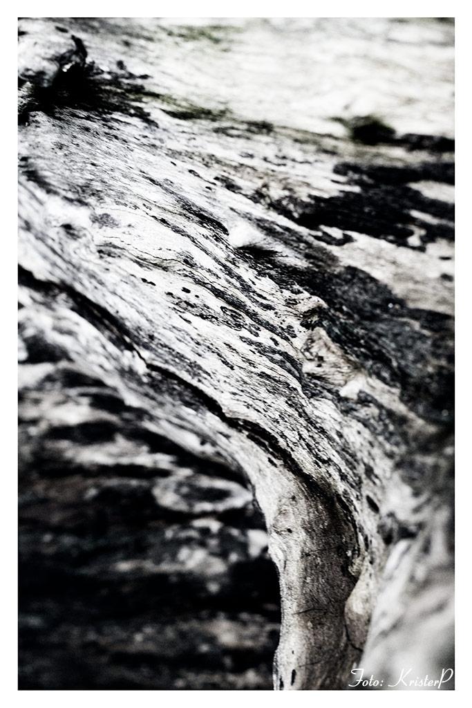 Wood art, shot using Sigma 35mm Art